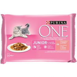 Ver PURINA®  ONE®   Wet Junior 4x85g